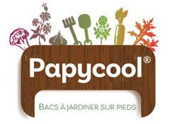 logo papycool