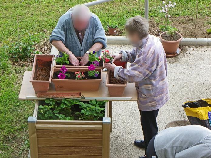 Atelier jardinage Rempotage en Ehpad