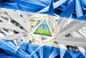Bacanalnica investiga: ¿Qué onda con la Marihuana en Nicaragua? (y dónde la venden)