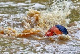 Fotos y videos impactantes por las lluvias ¿Cuáles son falsas y cuáles reales?