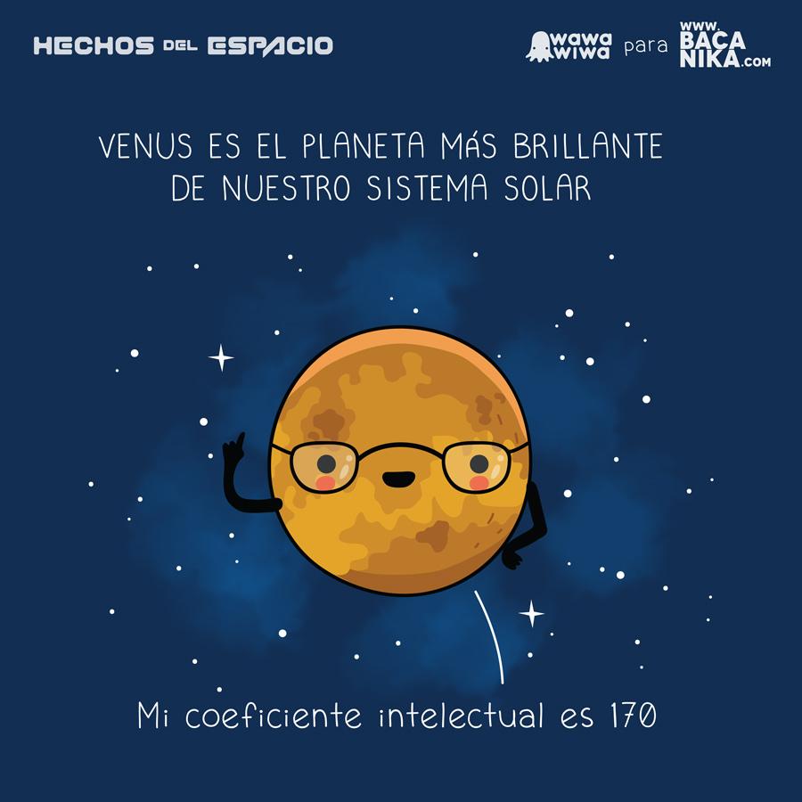 Verdades sobre el espacio  Revista Bacnika