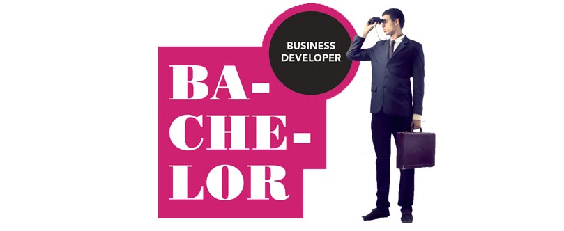 Bachelor Business Developper ICL