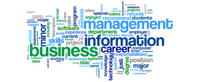 Management & Information Technology