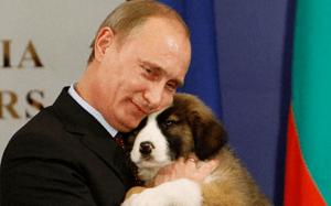 Vlad Putin puppies
