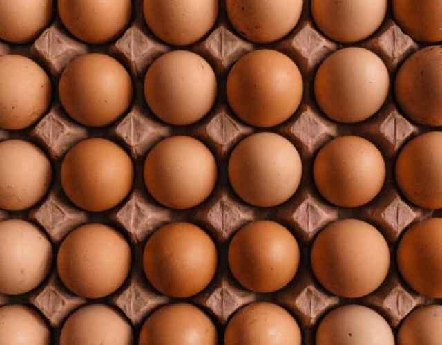 Eier in einem Karton
