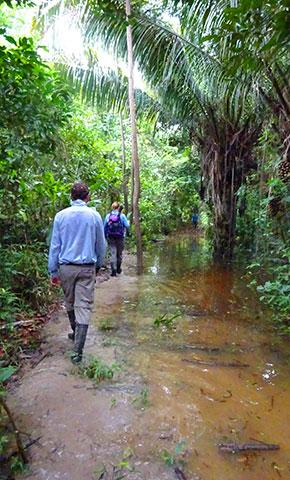 En marche vers notre maison pour ce deuxième jour en Amazonie