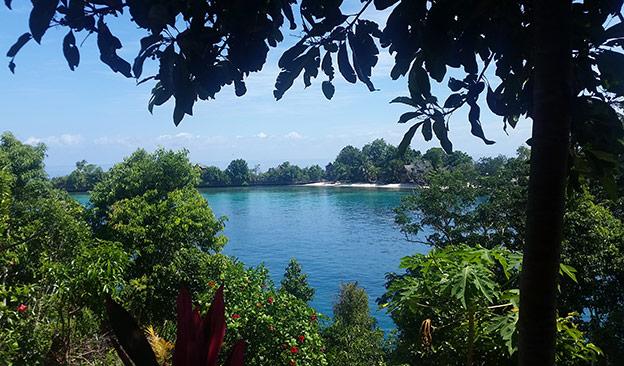 La vue depuis Araya Resort