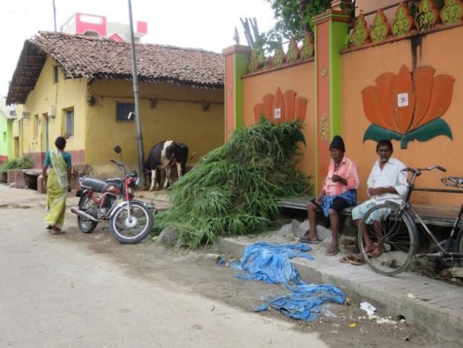 things to do in mysore: street scene