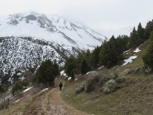 hiking in the mountains of Aksu Zhabagly National park