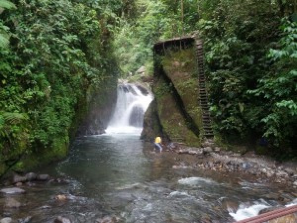 Mindo en Ecuador
