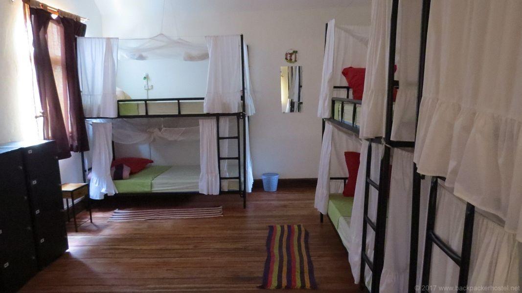 Lemur Hostel Antananarivo