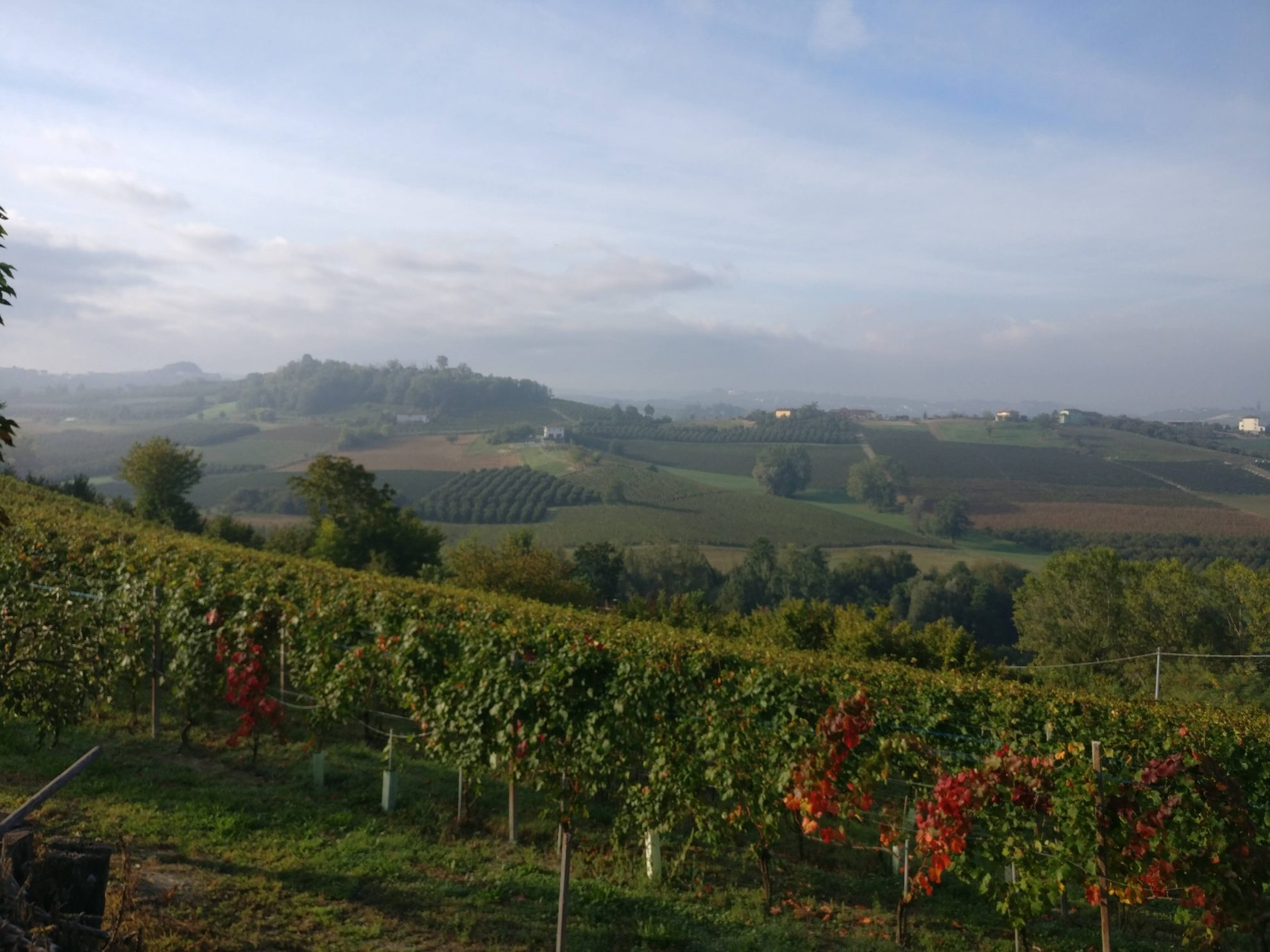 Het uitzicht bij Casa Faretto | Costigliole d'Asti | Piemonte Italië
