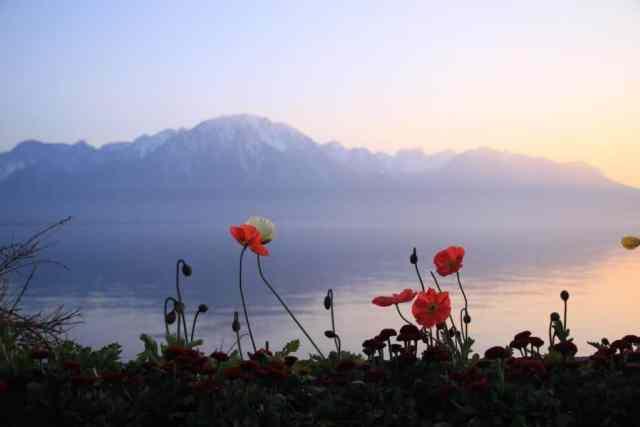 Trip po Švajčiarsku (10)