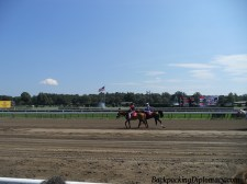 Horse races in New York