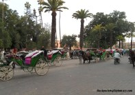 Carriages in Morocco