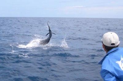 Deep Sea Fishing in Louisiana