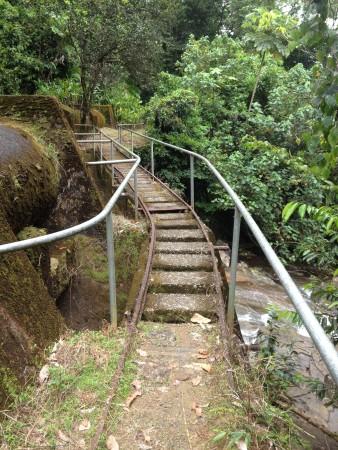 railway in puerto rico el yunque rain forest