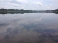 Lake in Ecuadorian Amazon