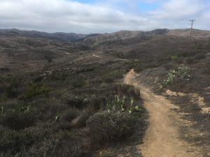 Transcatalina trail hiking in Catalina