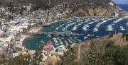 Things to do in Catalina Island