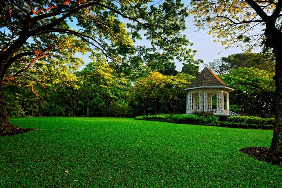 Botanical Carden - Singapore