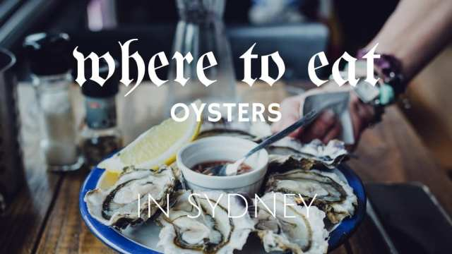 Oysters Sydney