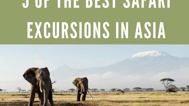 safari india