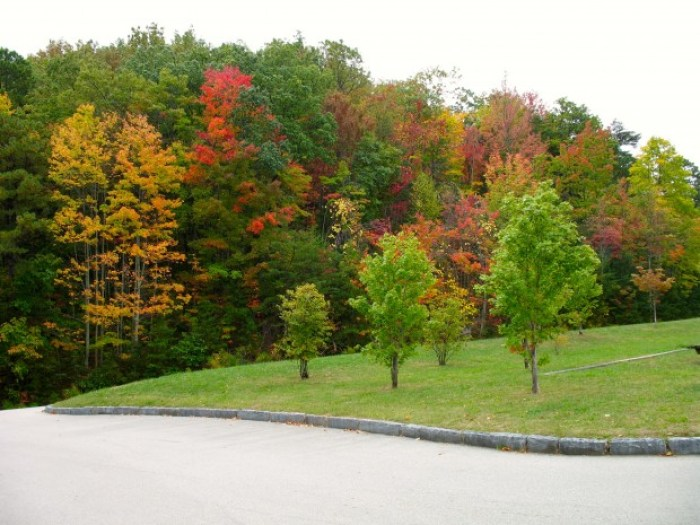 IMG 3782.JPG - Retro Roadtrip: Appalachian Autumn Part 2
