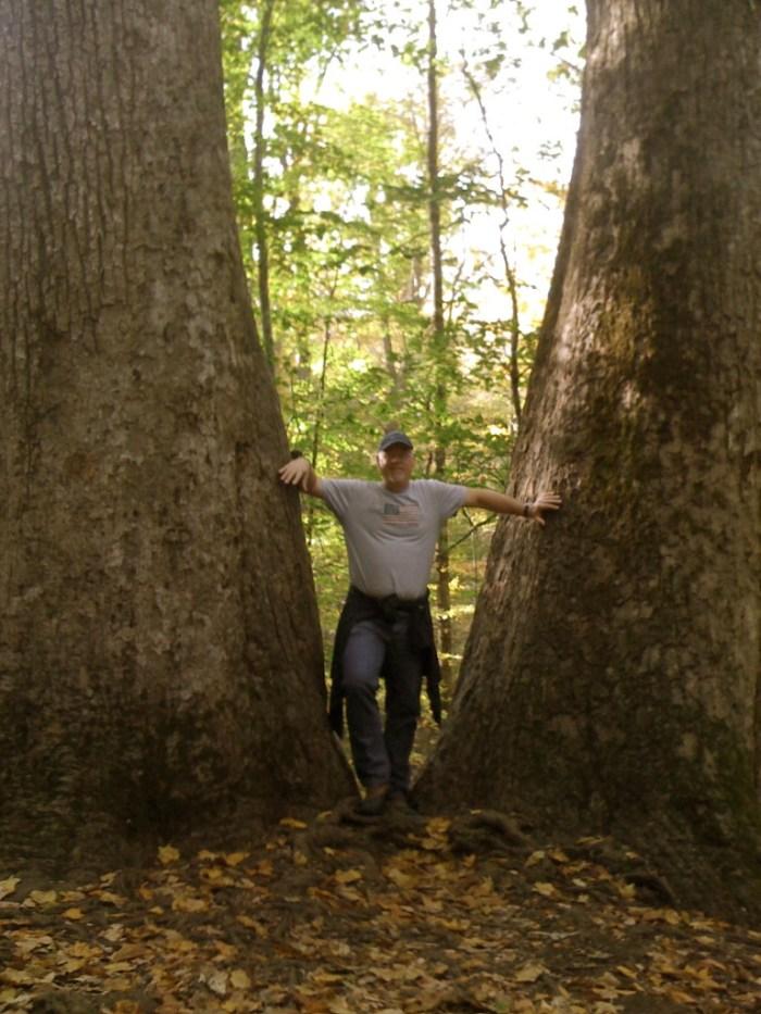 IMG 0285 Version 2 768x1024 - Hike the Joyce Kilmer Memorial Forest