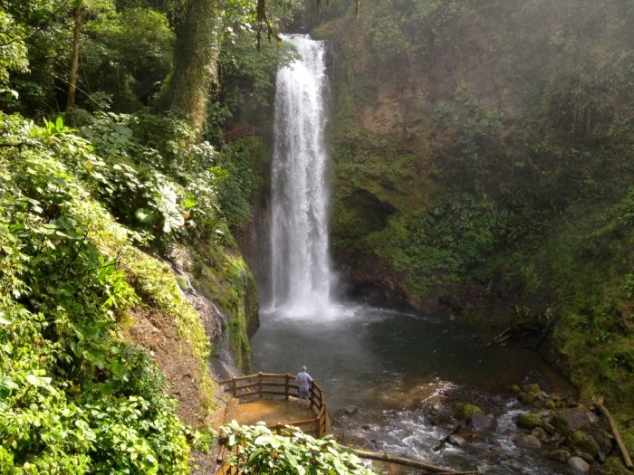 IMG 1964 Version 2 1024x768 - Discover La Paz Waterfall Gardens
