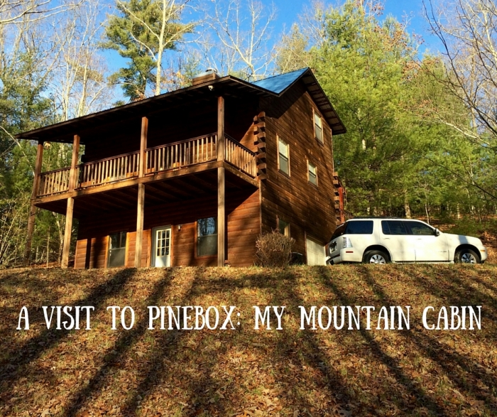 A Visit to Pinebox  My Mountain Cabin 4 - A Visit to Pinebox: My Mountain Cabin