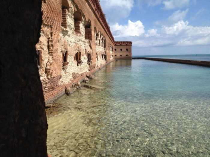 IMG 0883 - Fort Jefferson & Dry Tortugas National Park