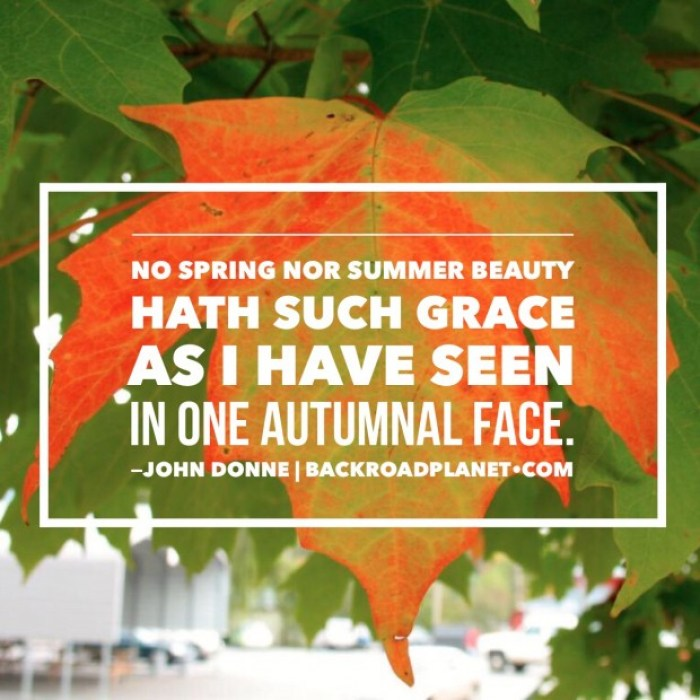 IMG 4357 - Original Travel Quote Memes #3: Autumn