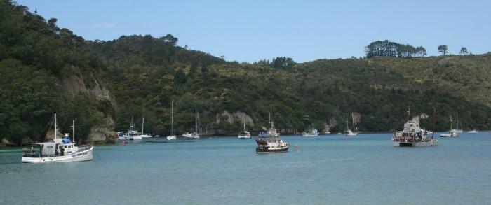 Coromandel large - Top 10 New Zealand Road Trip Destinations