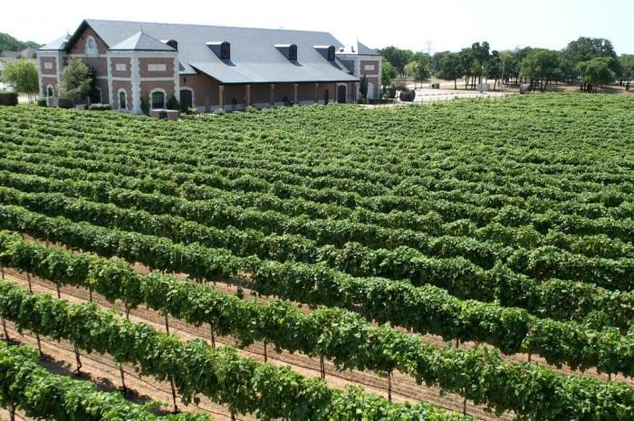 Delaney Vineyards - 30+ North American Bucket List Destinations