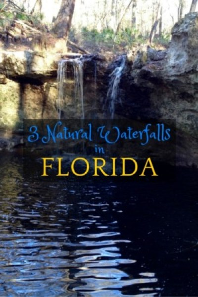 Three natural waterfalls in Florida you can visit: Falling Creek Falls, Falling Waters State Park, and Devil's Millhopper Geological State Park.