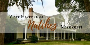 Historical 300x150 - The Best Way to Visit Vicksburg National Military Park