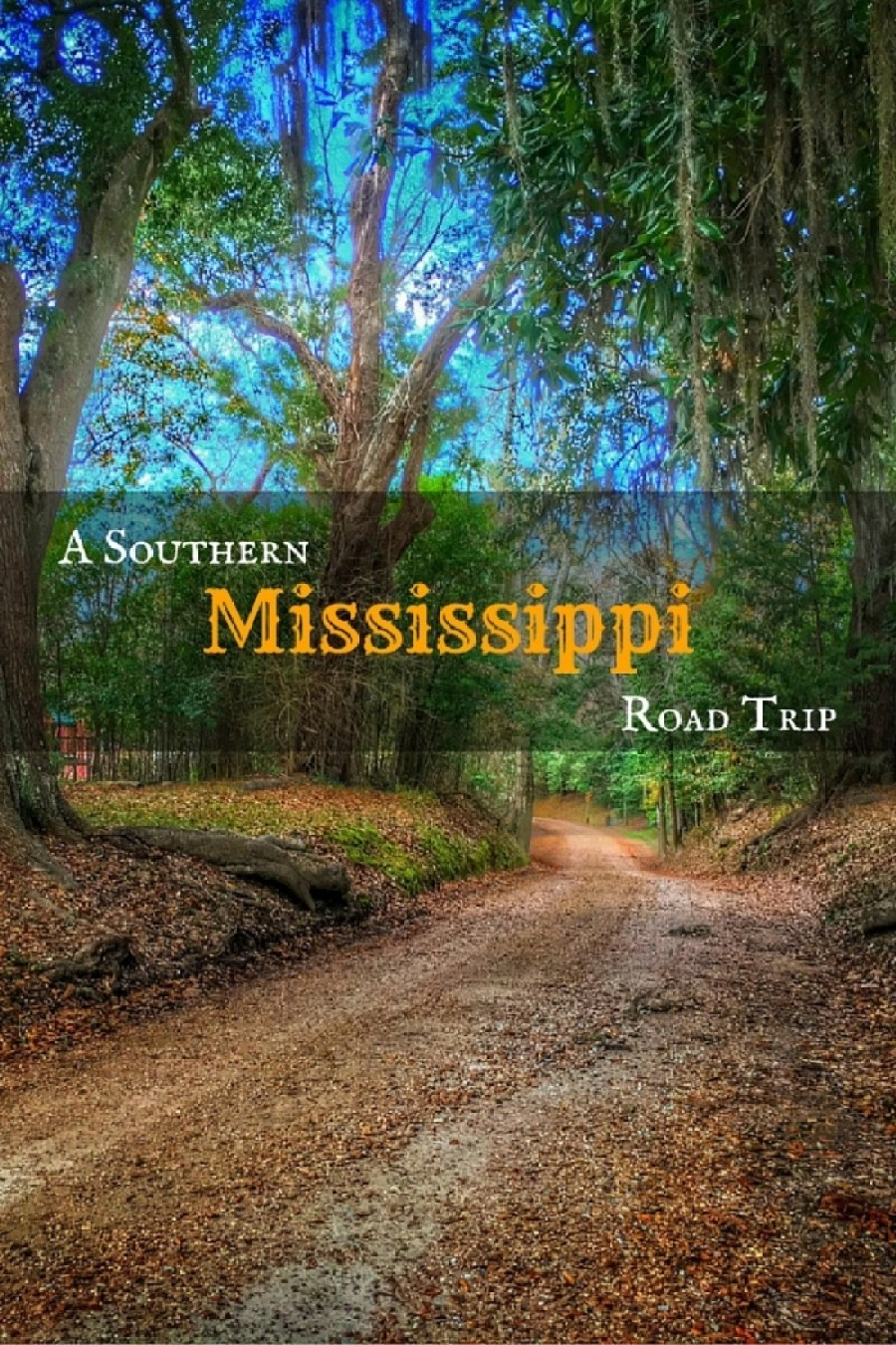 Mississippi 4 - A Southern Mississippi Road Trip
