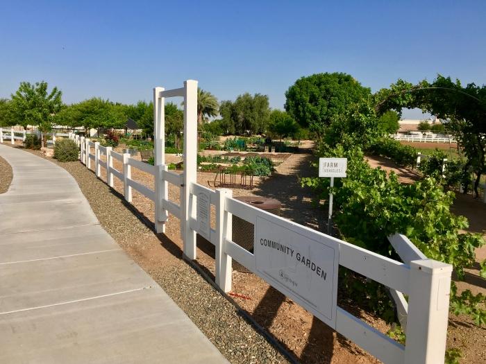 IMG 2749 - Pinetop to Salt River Canyon to Mesa: An Arizona Road Trip