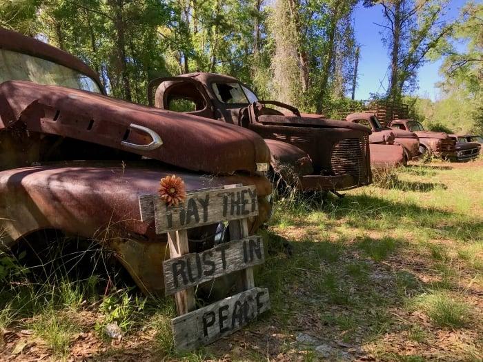 IMG 3028 - Florida Travel: The Sopchoppy Worm Gruntin' Festival