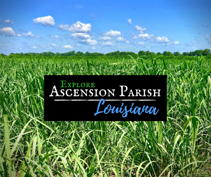 Ascension Parish Louisiana 2 - Design Your Own Louisiana Road Trip