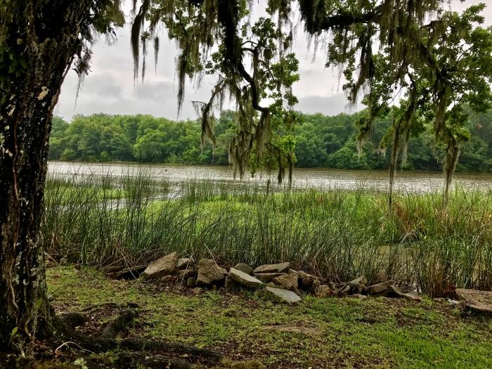 IMG 4634 - Three Perfect Days in Lafayette, Louisiana