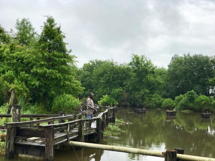 IMG 4668 - Three Perfect Days in Lafayette, Louisiana