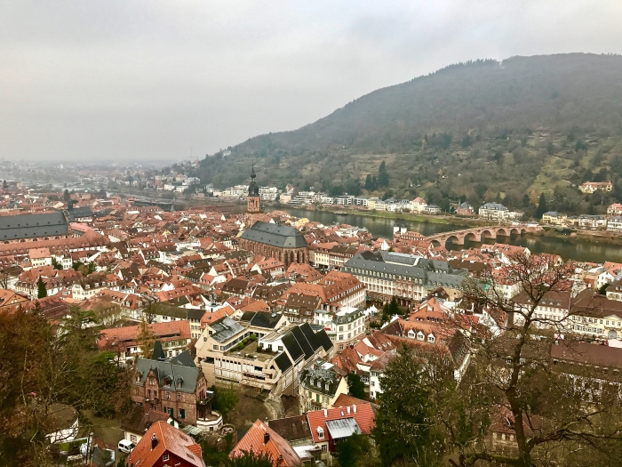 IMG 0418 - Viking Christmas River Cruises: A Rhine Getaway Travelogue
