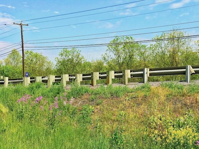 IMG 4467 - Discover Raystown Lake & Huntingdon County, Pennsylvania