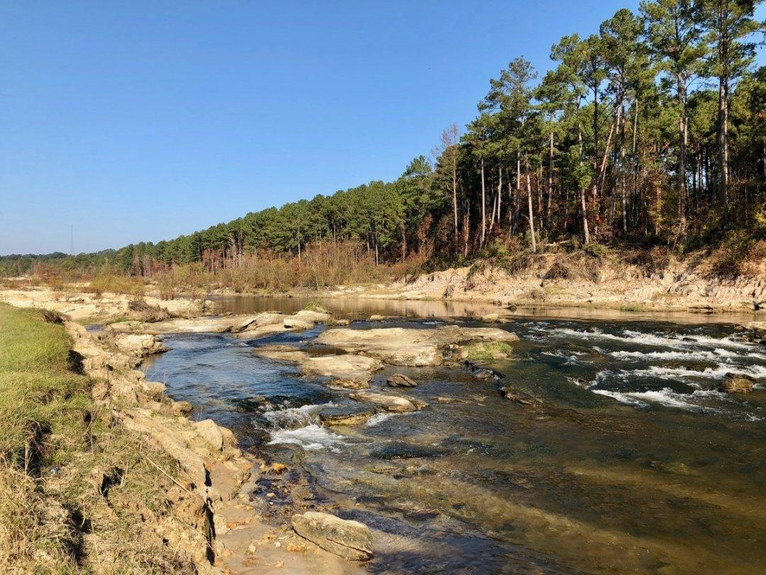 IMG 9956 - Discover Outdoor Adventure at Toledo Bend Lake & Sabine Parish, Louisiana