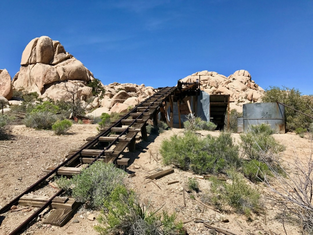 IMG 2523 - Best Hikes in Joshua Tree National Park on a One-Day Trip