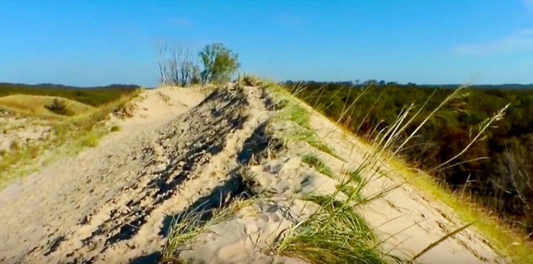 Indiana Dunes - The Great Lakes Tour: A Circle Road Trip Itinerary