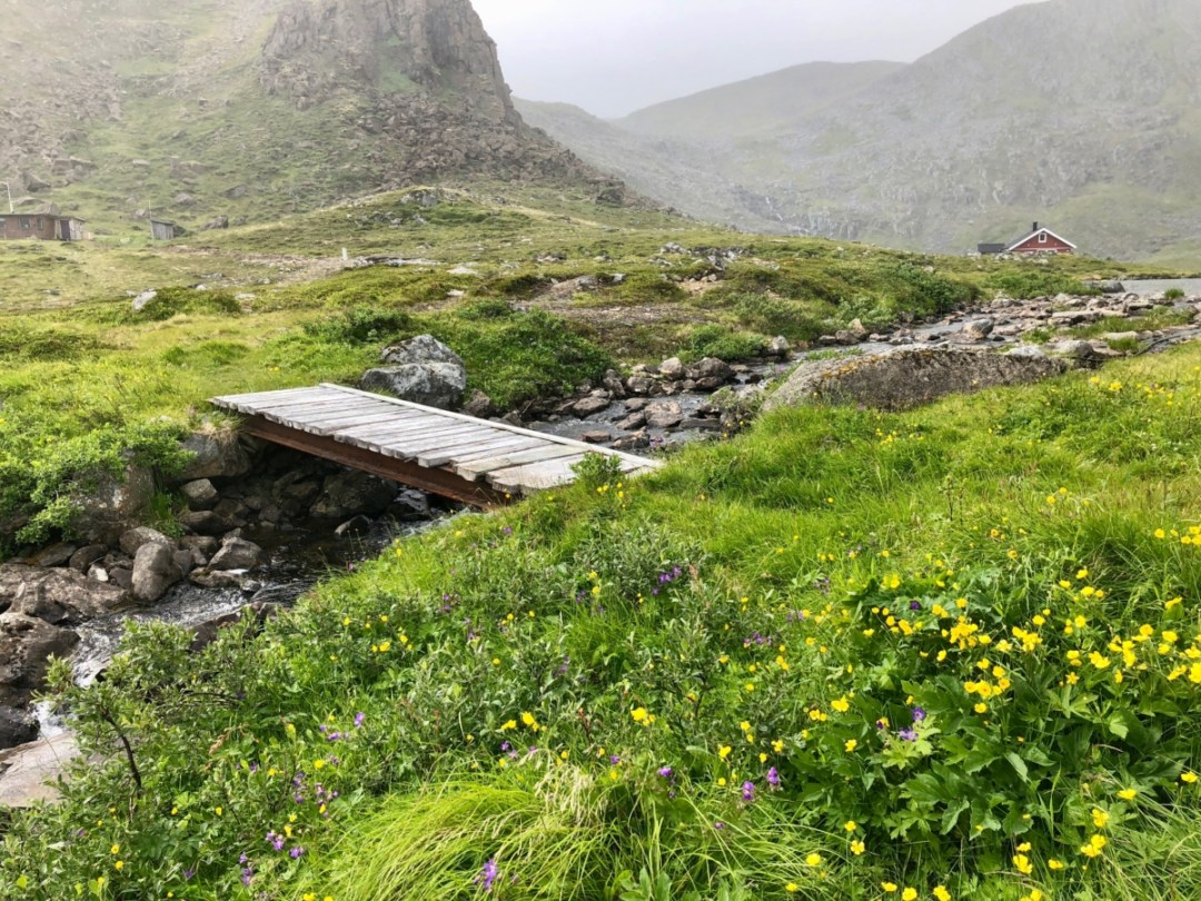 """IMG 3311 - Viking Cruises to Norway & the UK: An """"Into the Midnight Sun"""" Travelogue"""