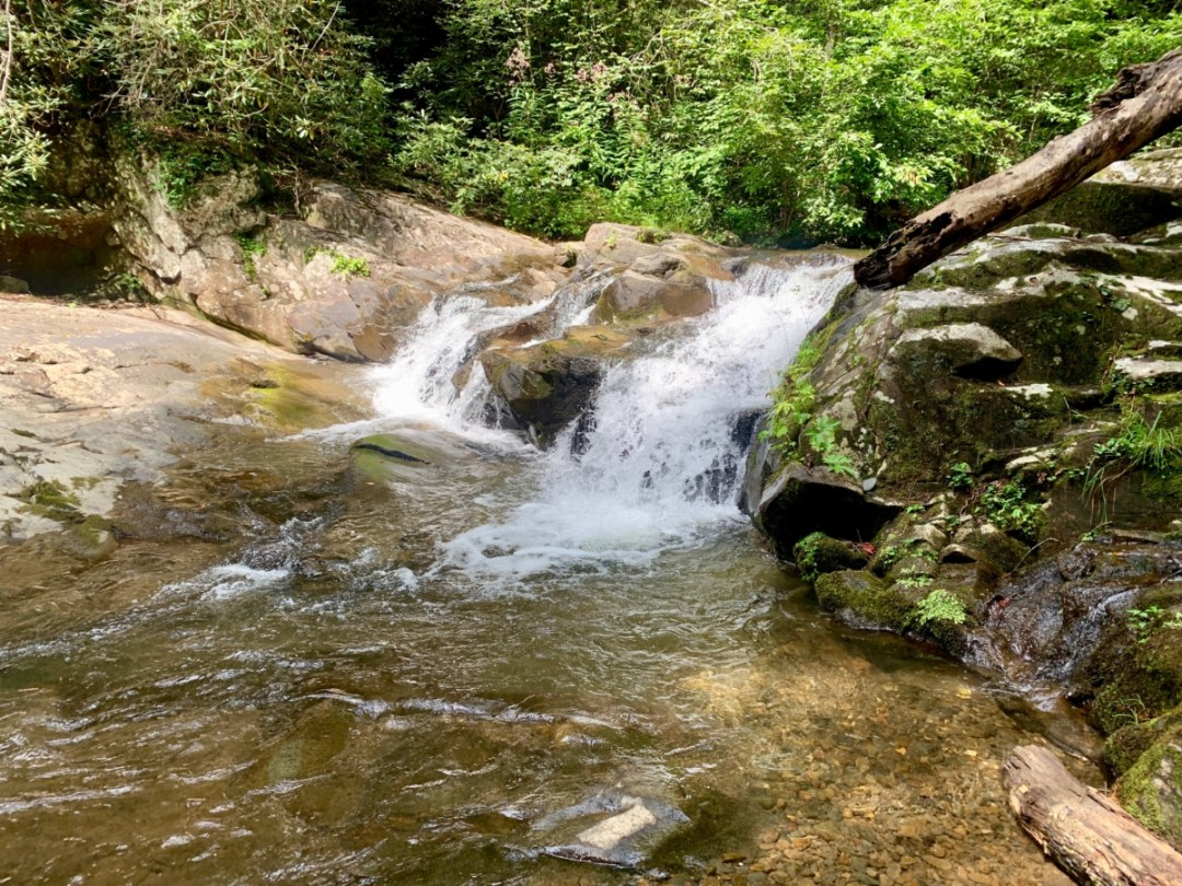 Holly Creek Falls - North Georgia Swimming Holes & Waterfalls You Can Swim In